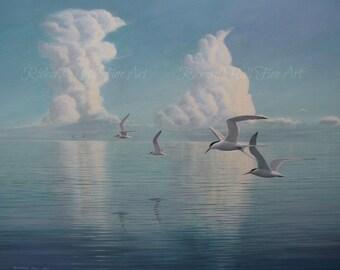 Elegant Terns 2011 Original Painting Acrylic On Canvas Richard Hull Fine Art
