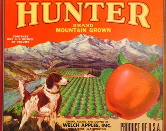 Vintage Fruit Crate Label for Hunter Brand Mountain Grown Apples