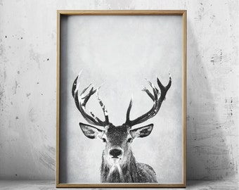 Digital Wall Art Print Deer Print Deer Antlers Stag Print Animal Print  Grey Print