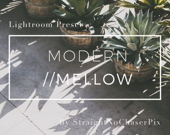 Modern/Mellow Lightroom Preset:A Stylish Matte Filter with A Modern Film Aesthetic for Architecture, Nature, Fashion Photography,