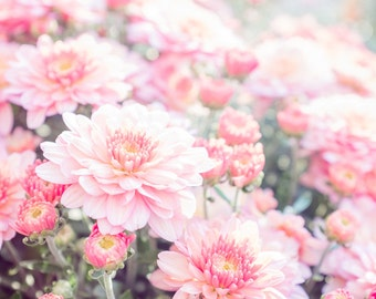 Flower Photography, Nature Photography, Flower Photo, Pink Photography, Pink, Flower Print, Fine Art Print, Wall Art, Exquisite