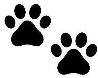 Window decal-pawprints