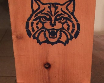 Hand painted Custom Bottle Opener and Catch.  Wall mounted