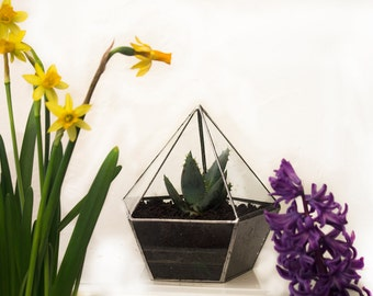 DISCOUNT 20% glass florarium/glass terrarium /hanging terrarium /terrarium container /large terrarium /succulent terrarium /terrarium plants