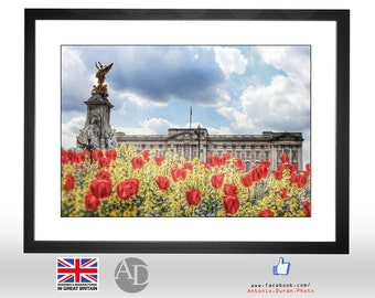 Buckingham Palace, Poppies, Spring, Sunny, London UK, Photography, Picture