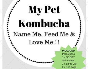 My Pet Kombucha (starter kit)