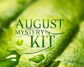 PRINTABLE August Mystery Kit Printable August planner sticker set Mystery Planner Sticker Set Planner Sticker Kit for Erin Condren Sale