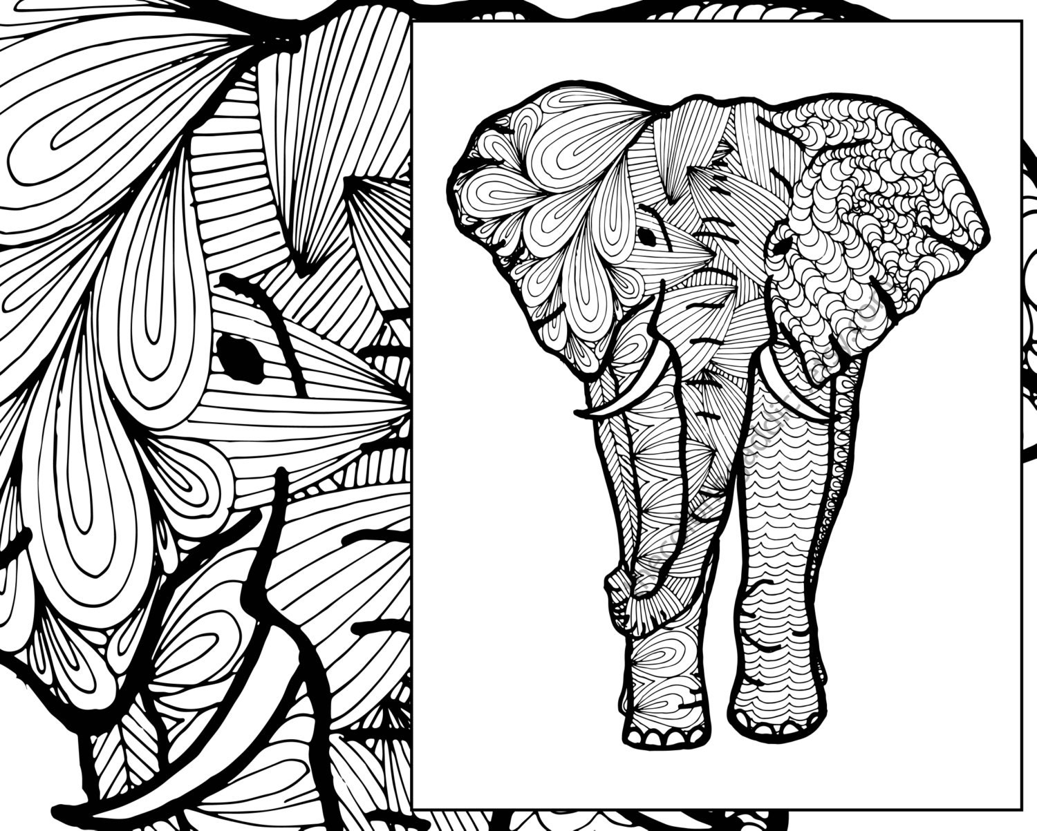 elephant coloring sheet animal coloring pdf zentangle adult