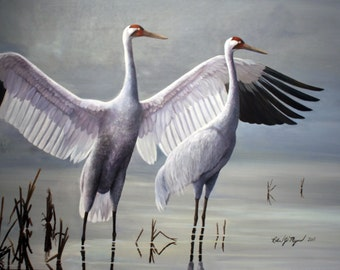 Wildlife Art Note Cards by Robin J. Myers, 5.5 in. x 4 in., Blank Note Cards