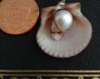 Seashell and Pearl Pendant