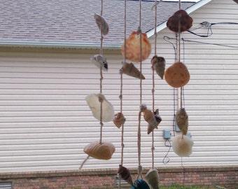 Mixed shells & driftwood wind chime