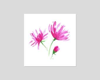 Pink Flowers Botanical Illustration Watercolour Print