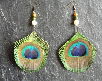 Earrings feather natural Peacock and pearls - Peacock jewelry earring