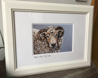 Ralph the Ram mounted giclee print in white frame