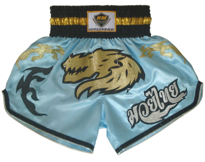 Muay Thailand Boxing Shorts for Training and Sparring Boxing Trunks Martial Arts - LIGHT BLUE