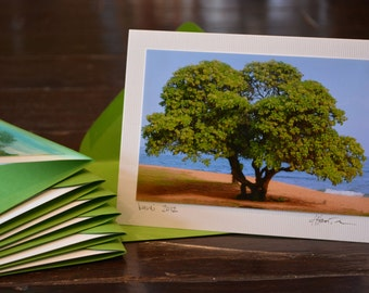 blank note cards - trees (8pk)