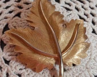 Crown Tafari Silver Oak Leaf Brooch