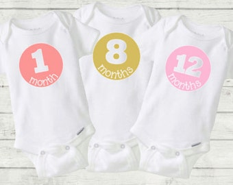 All Months Custom Onesie, Various Colors! Monthly Onesies, Baby, gift, photos, photography, GET ALL MONTHS