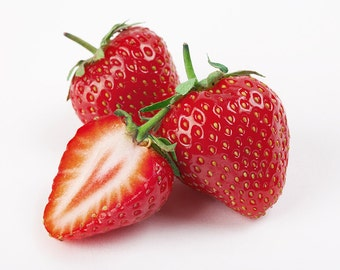 50 Jewel Strawberry Plants