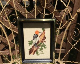 Vintage Framed Bird Drawing ~  Original Art