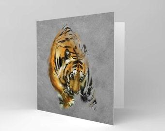 New Painting Tiger Cat Animal Wild Watercolour Greetings Birthday Card CS148