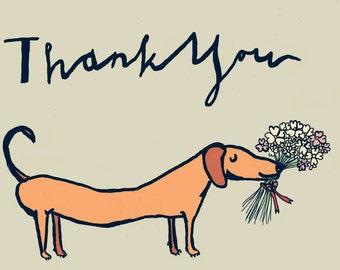 Sausage Dog Says Thank You - Greeting Card