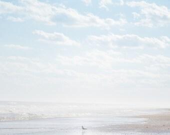 Beach Photography, Bird Photography, Sea Side, Coastal Decor
