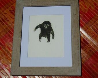 Chimp Print