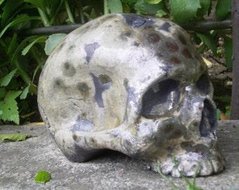 Replica of human skull in glazed stoneware khaki taupe, chocolate chips