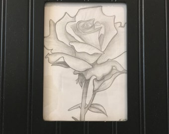 Original Rose Sketch