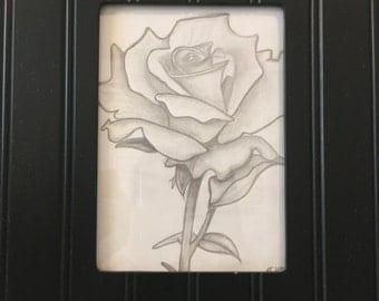Original Rose Sketch
