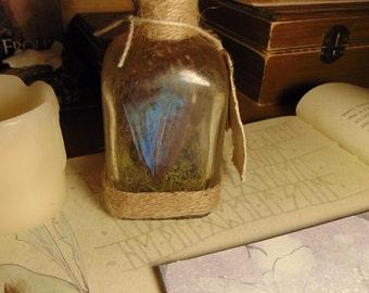 "Blue Faerie Wing Specimen jar butterfly  ""HANDMADE"" Fantasy Creature/Mythology/Folklore/Fairy Tale/Fairy gift Ideas"