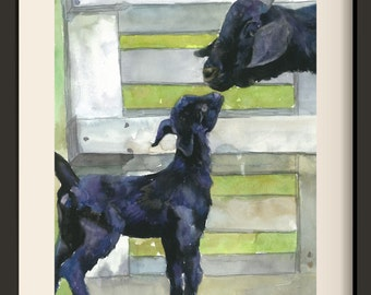 NO.24 A Baby Goat