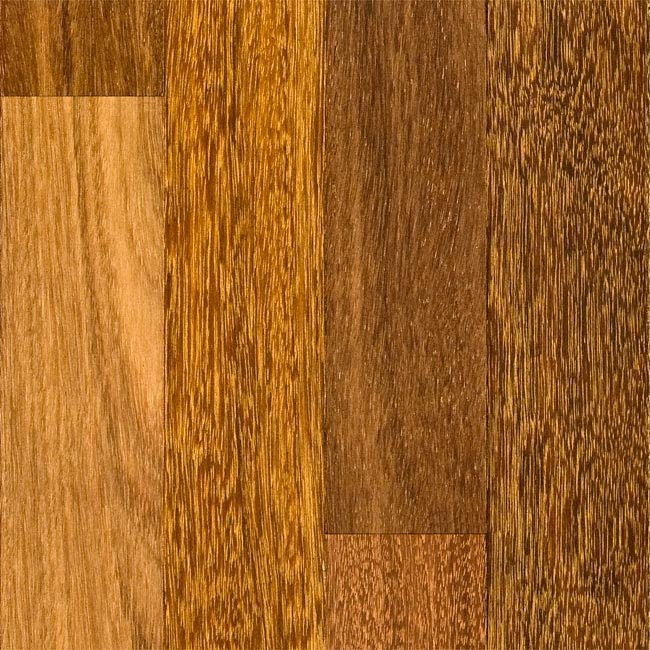 Brazilian chestnut sucupira hardwood flooring for Bellawood brazilian walnut
