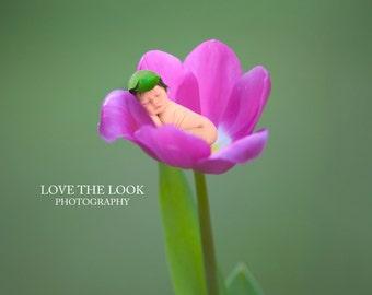 Flower Pack Digital backdrop