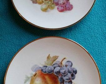 Two (2) Schumann Porcelain Fruit Plates, Arzberg, Germany