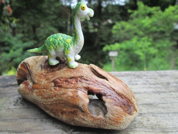 Dinosaur and Driftwood Decor