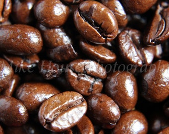 Coffee Beans Photograph