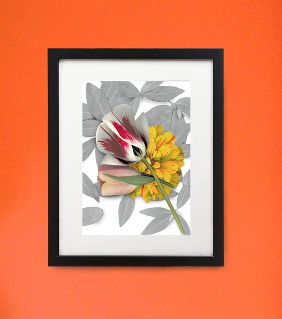 """Framed flower print of Tulips and Zinnia. 11"""" x 14"""" wood frame. Modern botanicals in unique setting."""