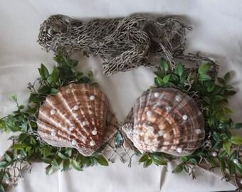 Mermaid's Lion Paw Seashell Bra