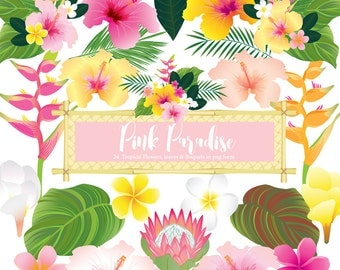 Pink Paradise, Tropical Flower clip art