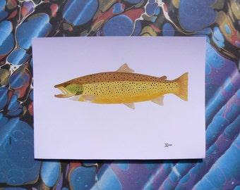Ferox trout postcard