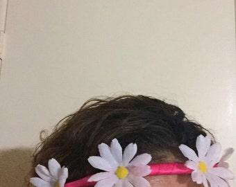 White daises