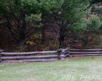 Autumn Rails 2