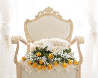 Newborn Digital Backdrop (antique/chair/roses/yellow)