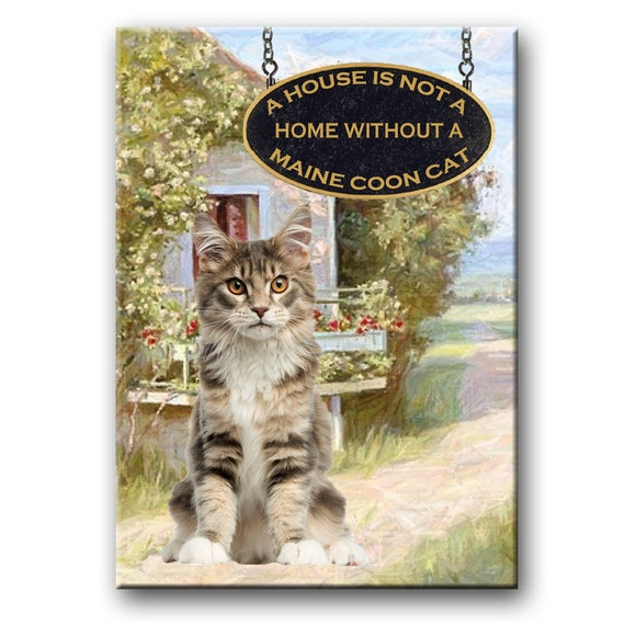 Maine Coon Cat a House is Not a Home Fridge Magnet No 4