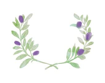 Custom Olive Branch Clipart