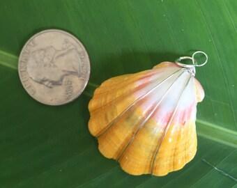 Sunrise shell pendant