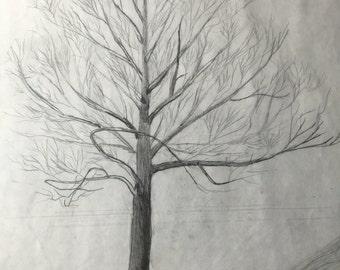 Hand Drawn Dead Tree