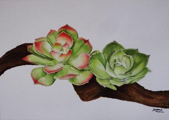 Original Watercolor Succulent Painting, Succulent Painting, Succulent Wall Art